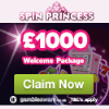 spinprincess-casino-1000welcome